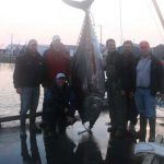 Bluefin tuna fishing with Joeys Fishing